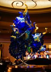 Glass Sculpture (Jslark91) Tags: lv clarkcounty nv bellagio hotel hotels artistic abstract art glass sculpture
