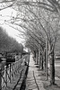 Score15_DSC0862_DxOFlatS (Eric Erac) Tags: roubaix canal dame solitude fatigue chagrin lady grief lonely