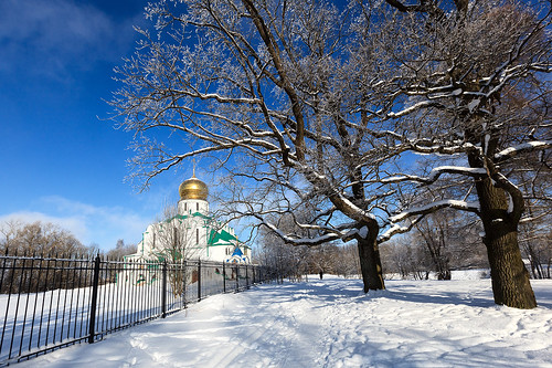 Cathedral and winter trees 1.