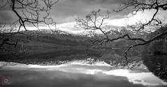 Loch Venachar, Monochrome (picsbyCaroline) Tags: landscape trees snow tree water sky scotland loch lake scenery scenic visit attraction