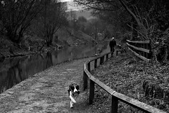 Man and his Dog (Bill Eiffert) Tags: dog man walking running canal water trees nature