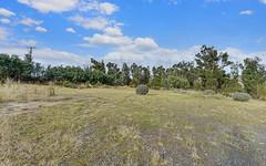 2434 Arthur Highway, Copping TAS