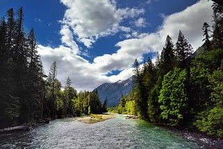 Upstream the Stehekin River with Views to Trees and Mountains (North Cascades National Park Service Complex)