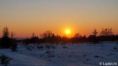 Hautes-Fagnes (Lцdо\/іс) Tags: hautesfagnes belgique belgium belgie ardennen ardennes ardenne sunset lцdоіс beauty coucher soleil winter 2018 eifel barraque michel waimes malmedy jalhay golden snow