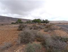 Landschaft  bei Rosa del Vicario, NGIDn1551122812 (naturgucker.de) Tags: ngidn1551122812 naturguckerde 1038097865 1062798284 938872571 chorstschlüter