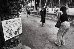 Warning !! (a└3 X) Tags: chiangmai thailand