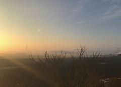 Morgendunst (captain.orange) Tags: morgendunst nebel dunst fogg mist morning morgen sonne sun