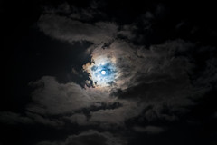 Full Moon (Metalbrother) Tags: philippholler wallis aargau switzerland schweiz world photography camera nikon d850 d750 d3200 sigma tamron nikkor 1530 35 2470 150600 300 creativecommons landscape animal bird exposure trend path day night lens nature color full moon fullmoon