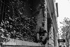 Killing time (wanderandclick) Tags: fujifilmx usa streetphoto fujifilmx100f us x100f city fujifilm smartphone acros man waiting phone monochrome travel nyc blackandwhite street people hoodie unitedstates fujifilmacros newyork streetphotography