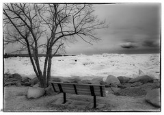 View From A Bench (maureen.elliott) Tags: 7dwf blackandwhite blackandwhitephoto landscape winter ice bench shoreline georgianbay view meafordontario