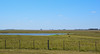 Pampas (crismdl) Tags: pampa pampas gaucho gaúcho campo field céu gado cow brazil brasil riograndedosul uruguay uruguai south sul churrasco