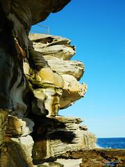 North Bondi Cliffs (Dude who takes photos of stuff) Tags: dazstockwell bondibeach northbondi camera portrait landscape desta destaone nikon appleiphone beach photography art frame