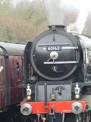 P1070374 - 2018-03-10 - NYMR - Tornado (GeordieMac Pics) Tags: nymr tornado tornadoweek march2018 20180310 geordiemac panasonic lumix dmc fz200 peppercorn a1 60163 grosmont steam engine locomotive ©2018georgemcvitieallrightsreserved smoke chimney train trees northyorksmoors station railway 462 uksteam