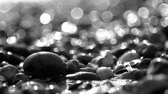 Winter beach bokeh (Andrew Malbon) Tags: fuji xt1 beech seaside stones depthoffield monochrome blackandwhite southsea portsmouth hampshire uk water wet focus sea tide sand lowtide winter vintage csc tamron