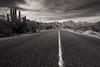 Central Baja (Alex E. Wells) Tags: baja bajacalifornia mexico road blackandwhite
