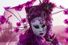 Une ombrelle rose (A pink umbrella) (Larch) Tags: ombrelle rose pink masque déguisement costume femme woman lady carnaval carnavalvénitien lumière light transparence elegant élégance chapeau hat umbrella mask carnival disguise transparency style flower annecy hautesavoie france