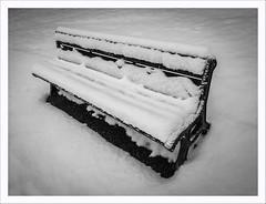 Sto in piedi (Outlaw Pete 65) Tags: neve snow panca bench inverno winter freddo cold biancoenero blackandwhite huaweip9 brescia lombardia italia