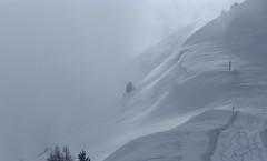 brume et vent (bulbocode909) Tags: valais suisse champexlac montagnes nature hiver neige arbres brume traces