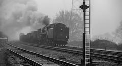 Misty morning freight (Peter Leigh50) Tags: swithland sidings freight train steam mist misty fog foggy great central railway gcr gala winter 2017 mono monochrome blackandwhite bw rail railroad signal smoke 70013