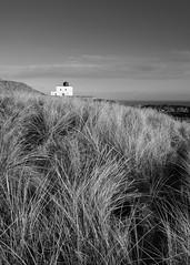 Bamburgh lighthouse mono (alf.branch) Tags: mono beach bw blackandwhite bamburgh lighthouse grass sea seaside seascape seashore coast eastcoast northumbriancoast bamburghlighthouse alfbranch olympus olympusomdem1 omd zuiko zuiko1240mmf28pro