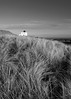 Bamburgh lighthouse mono (alf.branch) Tags: mono beach bw blackandwhite bamburgh lighthouse grass sea seaside seascape seashore coast eastcoast northumbriancoast bamburghlighthouse alfbranch olympus olympusomdem1 omd zuiko zuiko1240mmf28pro