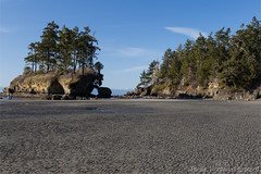 Crescent Beach 7174 (All h2o) Tags: beach sand landscape forest trees strait ocean sea washington state sky crescent tree rock olympic peninsula tongue point