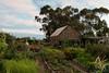 (Laszlo Papinot) Tags: werribee werribeepark vegie vegiepatch vegiegarden house farmhouse garden tree sky evening flower