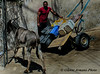 Tunisia (Gianni Armano) Tags: tunisia foto gianni armano photo flickr