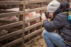 Photowalk mit den Jungs (O.I.S.) Tags: photowalk kids kinder jungs boys tim schweine pigs bauernhof farm winter foto fotograf photography canon 5d mkii 70200 f4 l is usm vlog