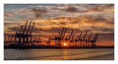 Hamburg (fotoerdmann) Tags: torzurwelt world europa canon6dmark2 sunset river habour hafen work kran elbe deutschland germany hamburg fotoerdmann