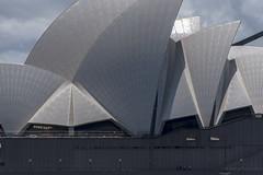 opera house (Greg Rohan) Tags: people icon tiles sails sydney sydneyoperahouse operahouse d750 2017 nikkor nikon