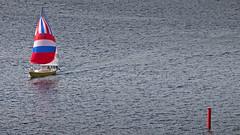 A sailboat in the Stockholm archipelago (Franz Airiman) Tags: sjömärke seamark babordsmärke märke sail segel segelbåt sailboat båt boat ship fartyg stockholm sweden scandinavia granhamnsfjärden granhamnbay