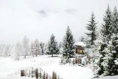 Volets Jaunes (Svend RS) Tags: leica m9 summicron 28mmf20 28mm rangefinder wideangle asph leicasummicron28mmf20 manualfocuslens winter snow chalet