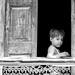 Pushkar Boy