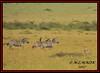 CHEETAH CUB (Acinonyx jubatus).....WITH COMMON ZEBRA (Equus burchelli).....MASAI MARA......SEPT 2017 (M Z Malik) Tags: nikon d3x 200400mm14afs kenya africa safari wildlife masaimara keekoroklodge exoticafricanwildlife exoticafricancats flickrbigcats cheetah cheetahcubs zebras ngc