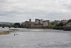 Cottage (René(NL)) Tags: nikon castle ireland limerick ierland kingjohnscastle shannonriver