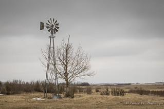 A vanishing relic - the windmill!