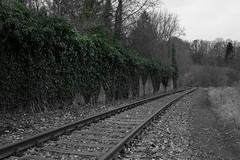 Gleis nach Unterbreizbach_Vacha_10.03.18 (Stephan Möckel) Tags: gleis vacha
