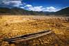 泸沽湖 (Zhang Yiqing) Tags: 风景 自然 湖 草地 蓝色 黄色 泸沽湖
