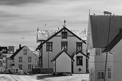 Norvegia - Vesterålen - Andøya (Euge.S) Tags: norvegia norway vesterålen andøya island isola blackwhite biancoenero case andenes town paesaggio paese landscape panorama gabbiani gull seagull