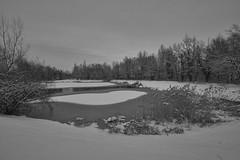 Plan d'eau de Rumilly en mode hivernale (standdeb) Tags: hiver eau lac neige glace nature rumilly plan hautesavoie france plandeauderumilly noir blanc noiretblanc canon400d sigma816 fisheye paysage