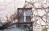 week thirty-two (Joanna Justyna) Tags: window film filmisnotdead nature building 52 weeks project