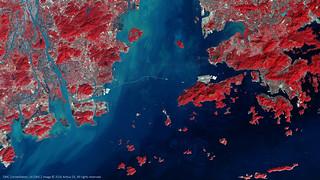 Hong Kong–Zhuhai–Macau Bridge Project