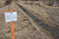 Disused line 308 track crossing , Kowary 12.03.2018 (szogun000) Tags: kowary poland polska railroad railway rail pkp line branchline track disused overgrown crossing road dirt sign d29308 dolnośląskie dolnyśląsk lowersilesia canon canoneos550d canonefs18135mmf3556is