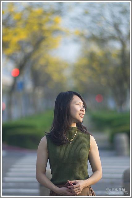 南科 黃花風鈴木 新市區.台南私藏景點 (5)