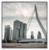 Rotterdam / Erasmus Brug (j.vandergaag) Tags: rotterdam erasmusbrug mediumformat mamiyac220 mamiyasekor65mm believeinfilm kodakektar oma remkoolhaas netherlands