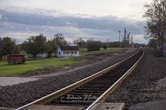 070/365 : Tracks