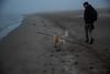 Boira al Fangar (rfabregat) Tags: boira beach delta fangar marquesa mediterrani mediterraneo mediterranean deltadelebre deltebre tarragona catalunya catalonia landscape duna fog dog arena sorra sand