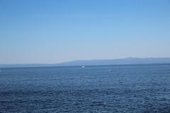 IMG_7667 (mudsharkalex) Tags: california pacificgrove pacificgroveca