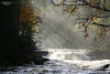 Silver Light (kaeley.warren) Tags: autumn rivers waterfalls forests